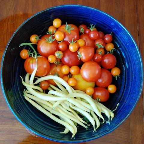 Chris Ever's Garden Produce Photo