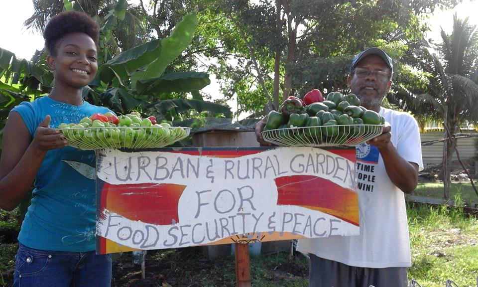 Cultivating More than Veggies In Belize City