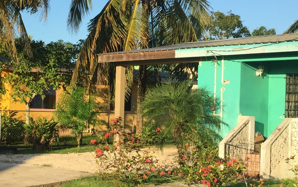 Home sweet homes | Belize and Brooklyn